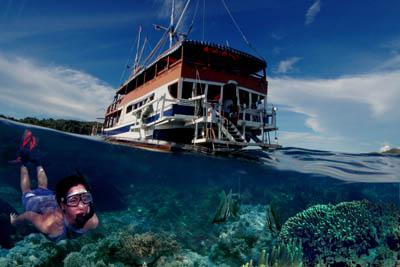 http://dunialaut.com/wp-content/uploads/2009/01/skin-dive-raja-ampat.jpg